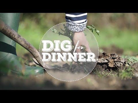 MED3201 | Independent Television Production | Dig for Dinner