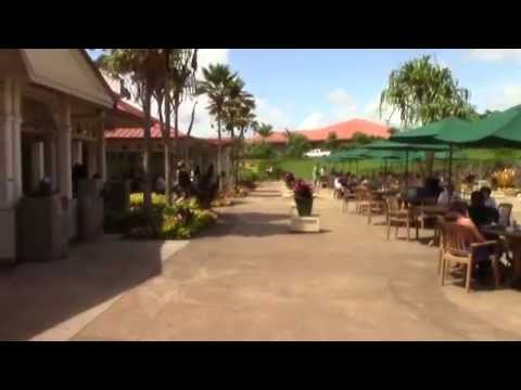 Dole Plantation Walkthrough in Honolulu, HI