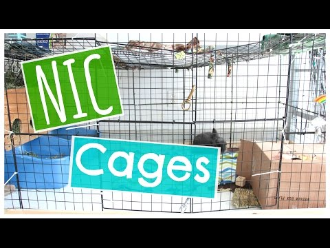 NIC Rabbit Cages