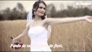 Felicia Feldiorean - Petale De Suflet