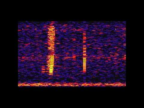 The Bloop: A Mysterious Sound from the Deep Ocean   NOAA SOSUS