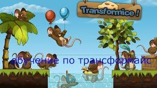 Обучение по Трансфорайс или как там зерегестрироваться