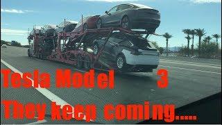 Tesla Model 3 They keep coming...