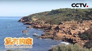《远方的家》 20190509 一带一路(485)阿尔及利亚 地中海南岸的中国故事| CCTV中文国际