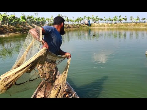 Throw Net Fishing on Boat | Unbelievable net fishing | fishing with cast net (Part-05)