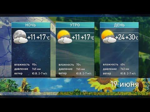 Прогноз погоды на 19 июня: без осадков и до +30°С
