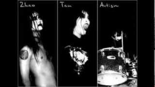 Top 10 Depressive Suicidal Black Metal Songs