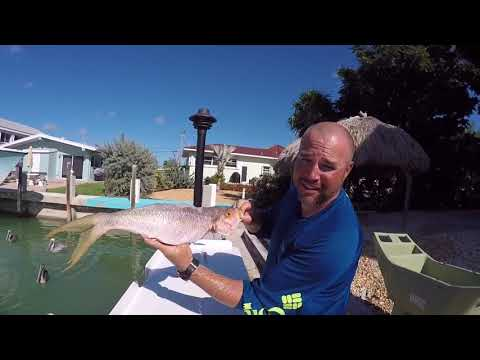 DIY Offshore Fishing Florida Keys (Boat Rental, House Rental, Restaurants & More).