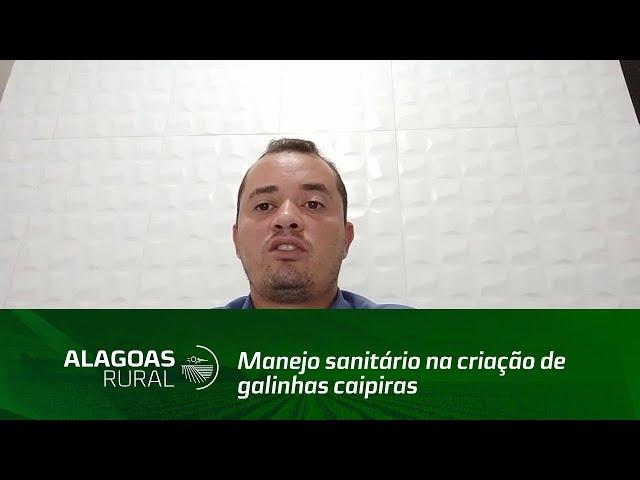 Técnico de Campo fala sobre o manejo sanitário na criação de  galinhas caipiras