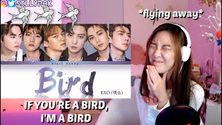 Gambar cover EXO 엑소 - BIRD REACTION (Fly away with me!!!)