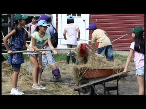 Spring Brook Farm and Farms for City Kids