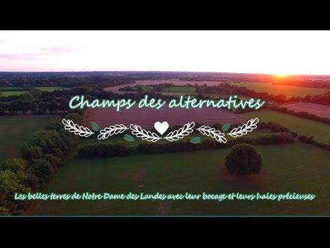 Agroécologie en France Champs des alternatives (Merci à tous vos visionnages et relais :o))