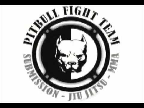 logo PITBULL FIGHT TEAM animado