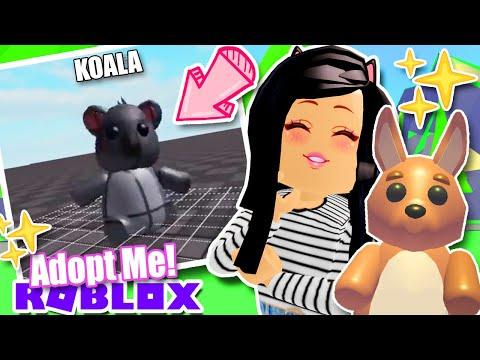 *NEW* 🐨 KOALA