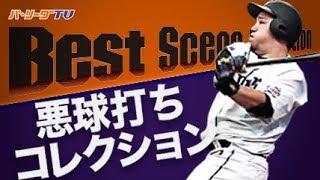 悪球打ちコレクション《Best Scene Selection》 thumbnail