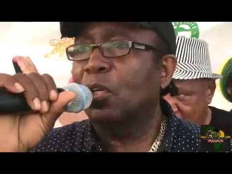 TipperTone HiFi fet Al Campbell Sassafras@Coney Island Reggae On the Boardwalk(8-5-18)