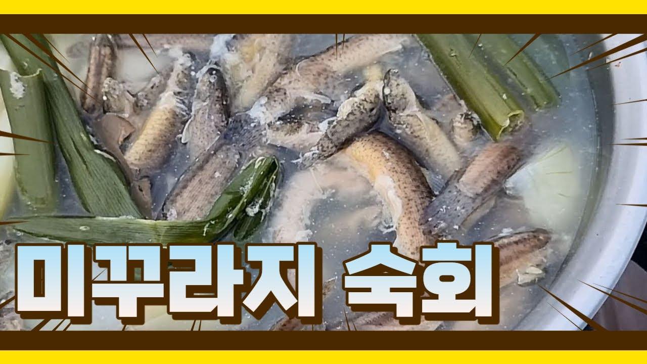 여름보양식 미꾸라지숙회