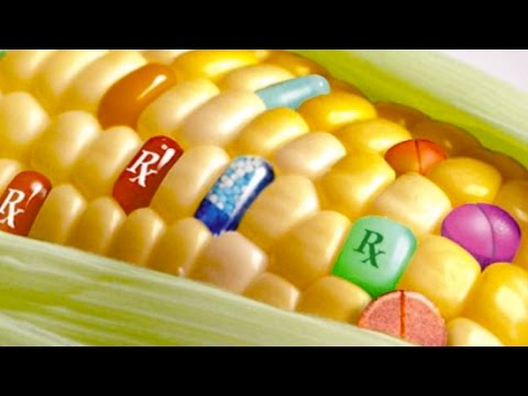 10 Worrying Facts About Genetically Modified Food - YouTube