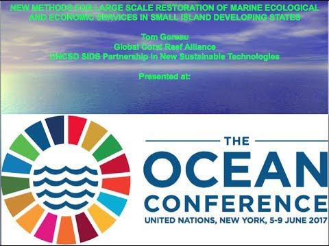 UN Oceans Conference