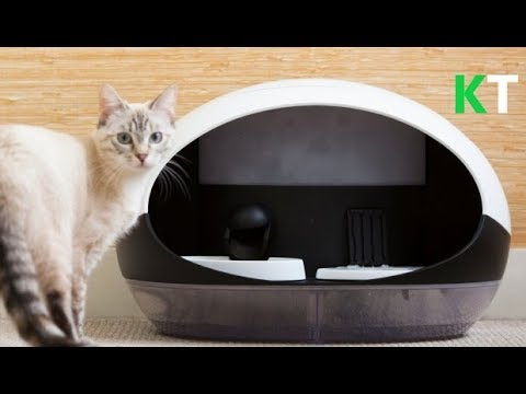 Cat gadgets | Things your cat want | Top 10 Smart Cat Gadgets that your cats will surely love 😻🙀❤️