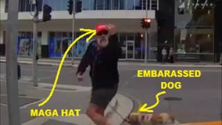 Maga Hat Lunatic gets hit in the face with metal object.