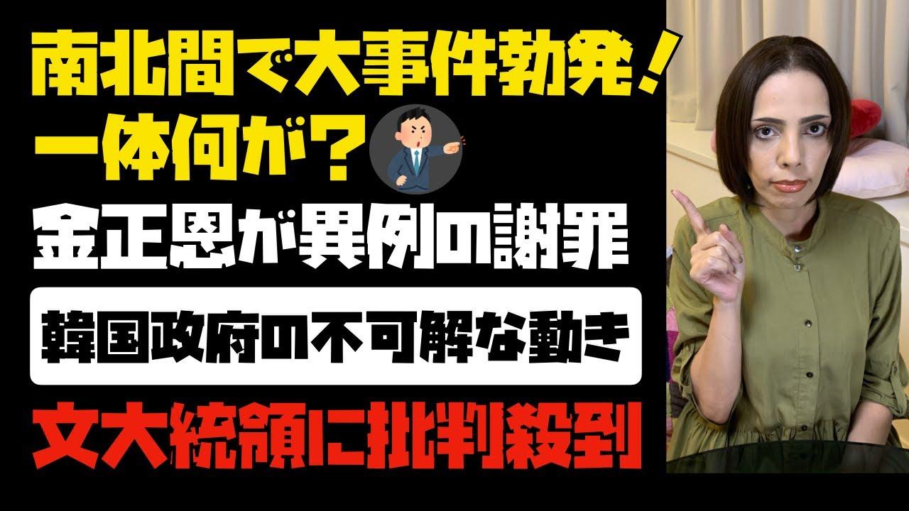 【韓国政府の不可解な動き】南北間で大事件勃発!一体何が?金正恩委員長が異例の謝罪。文大統領へ批判殺到。