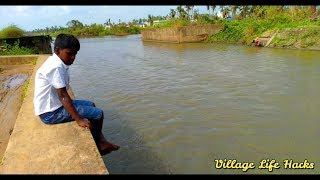 WoW ! Very Rare Cat-Fish Catching Hack By Village Children in India