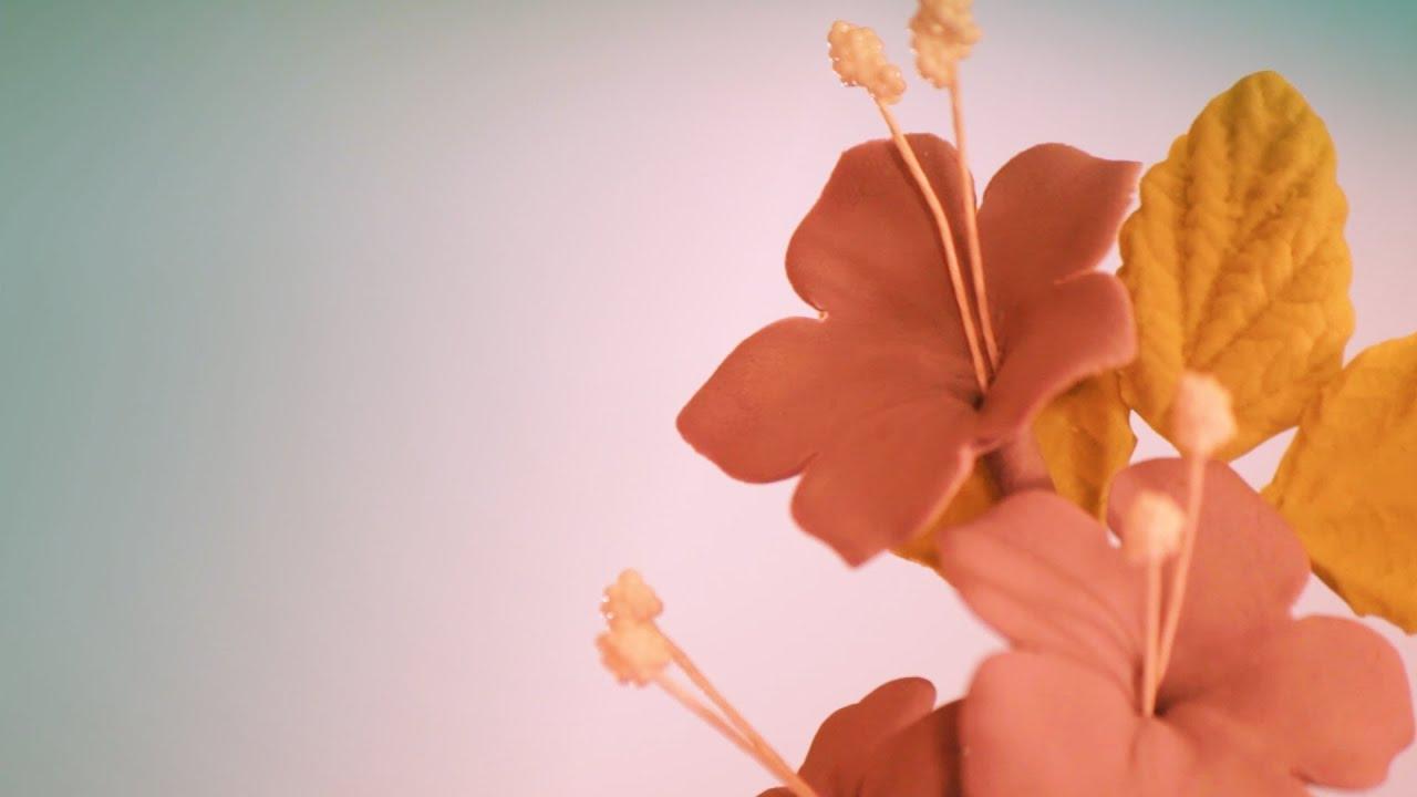 C mo hacer flores de pasta de goma para tartas - Como hacer flores ...