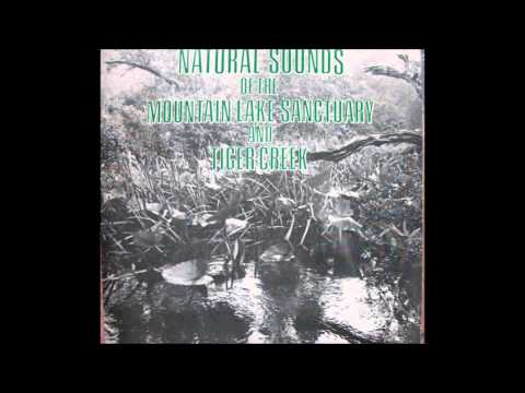 NATURAL SOUNDS of the MOUNTAIN LAKE SANCTUARY 1975