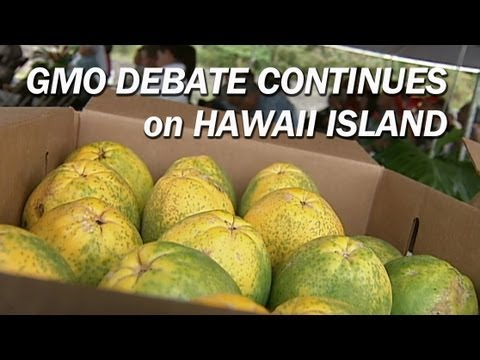 Experts weigh-in on Hawaii GMO prohibition