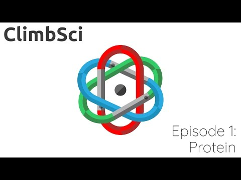 ClimbSci - Episode 01 - Protein