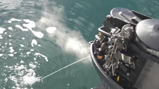 moteur yamaha 50 cv