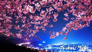 🌸Japanese Traditional Relaxing Music Zen 桜