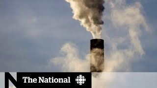 Carbon tax fact check: separating truth from fiction in national debate