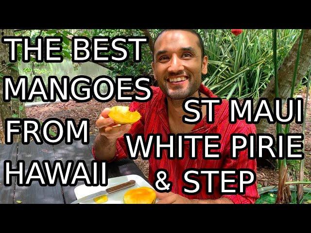 Mangoes From Around The World, Episode 3: Tastiest Hawaiian Mangoes in Florida