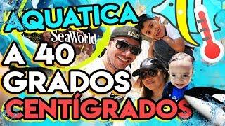 Seaworld tiene un parque acuático y lo visitamos