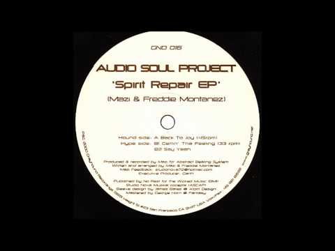 Audio Soul Project - Back To Joy (Original Mix)
