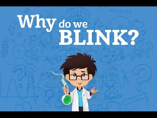 Why do we blink? | Karim's WOWs (s01e2)