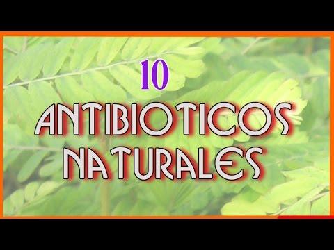 10 Increibles Antibióticos Naturales Que te Ayudaran a Enfrentar a Las Infecciones