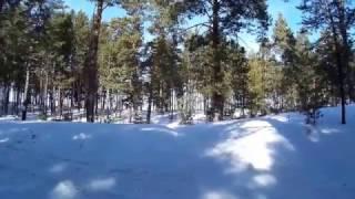 видео Как появились лыжи?