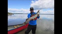 Fishing - Lac La Biche