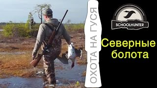 Охота на гуся с #манками SCHOOLHUNTER. #МанкиМельника(Охота на болоте в Архангельской области. Hunting goose. Духовые #манки можно купить здесь: http://www.schoolhunter.ru/ т. +7-909-995-6..., 2015-02-14T07:36:35.000Z)