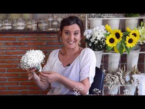 Dansul Mirilor Surpriza 2013!из YouTube · Длительность: 7 мин57 с
