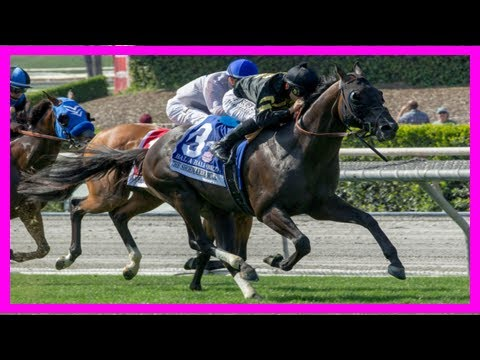 Breaking News | Bal a bali retired, will not run in bc mile
