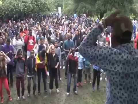 Africa Day Dublin 2014