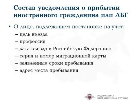 ФМС РФ порядок отчетности  фмс