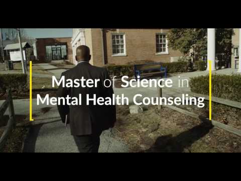 Ms In Mental Health Counseling At Pace University