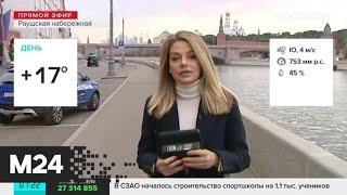 """""""Утро"""": теплая погода ожидается в столичном регионе 8 октября - Москва 24"""