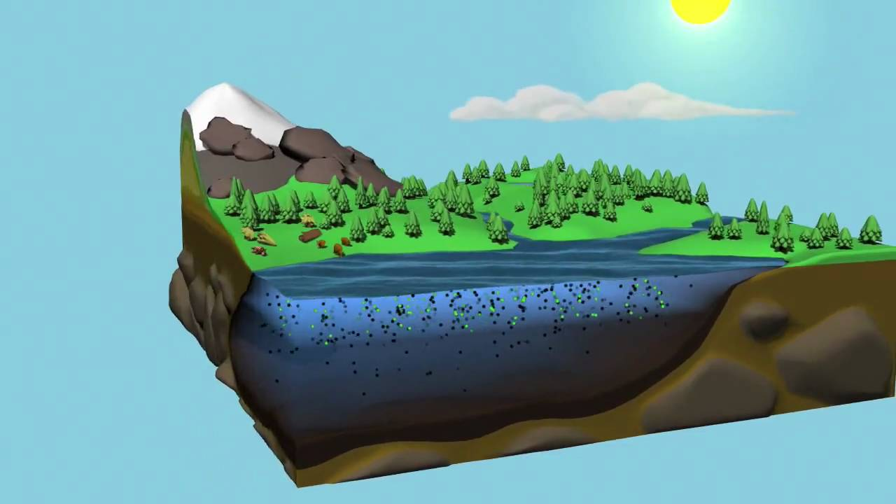 animated water cycle diagram earth guide [ 1280 x 720 Pixel ]