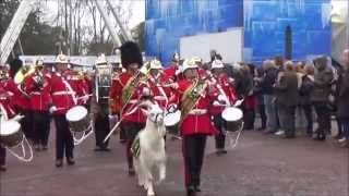 Cardiff's 2015 Remembrance Sunday Parade.